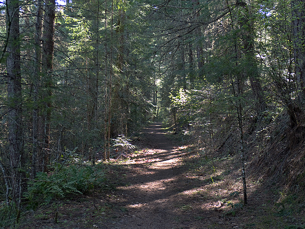 WA Forest Trail 4-23-12