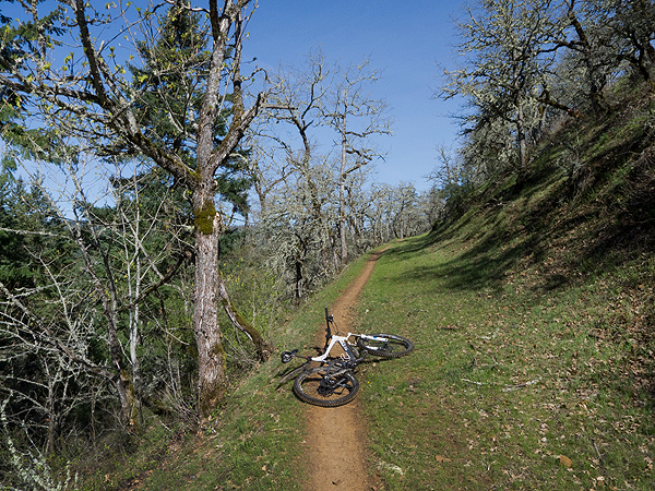 Pacific Northwest singletrack