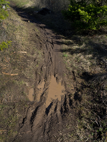 Trail damage