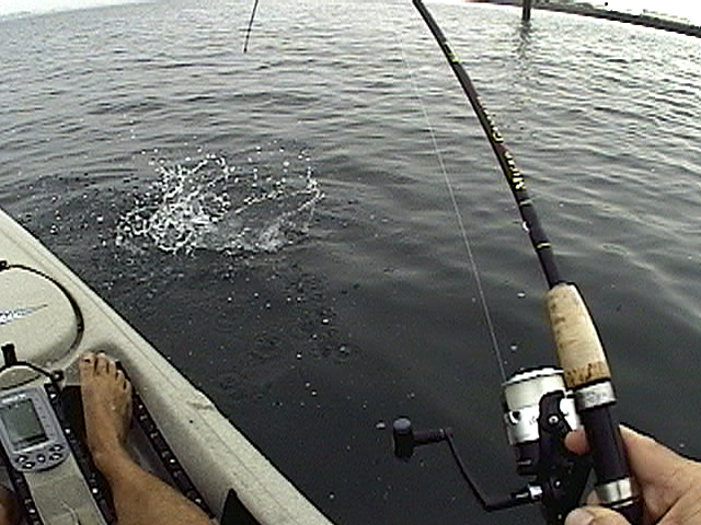 Click HERE for Kayak Fishing on San Diego Bay at Shelter Island video