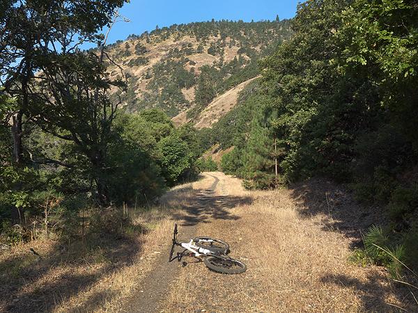 Klickitat County singletrack