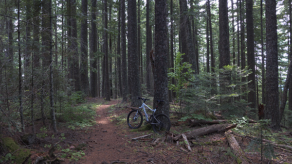 Perfect conditions for mountain biking