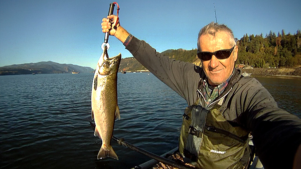 Columbia River chinook salmon caught from the kayak