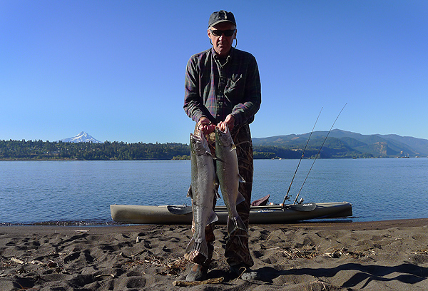 Columbia River coho salmon