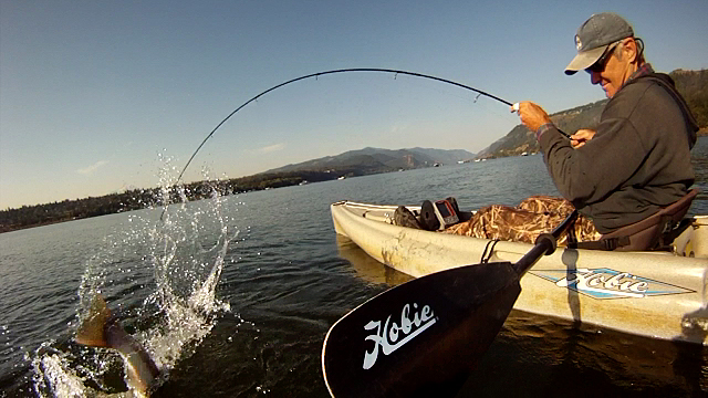 Click HERE to check out the Kayak Fishing for Steelhead on the Columbia River - Fall 2014 video