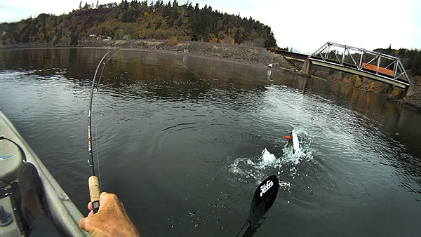 Kayak fishing for salmon on the Columbia River