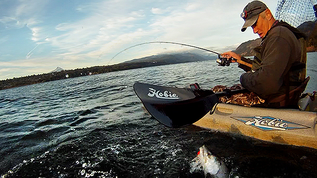 Click HERE to check out the 2014 Kayak Fishing for Salmon on the Columbia River video