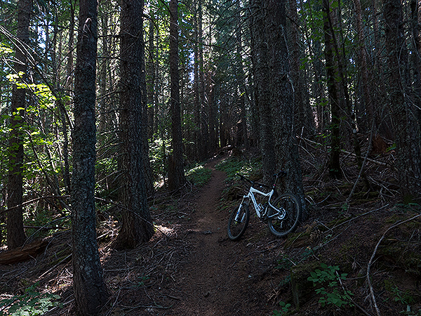 Early morning mountain bike ride