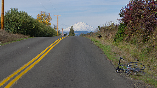 Cycling in Oregon with Mt. Adams in the distance