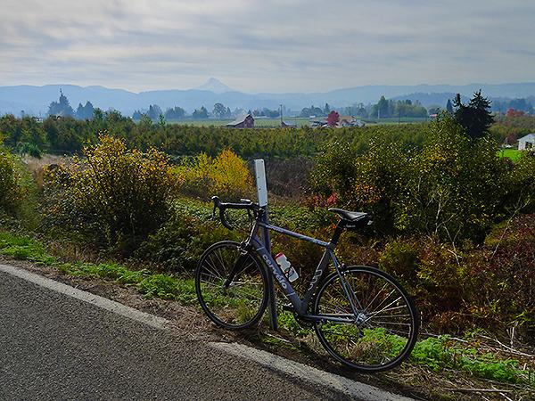 Cycling near Mt. Hood