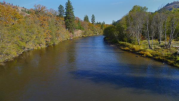 SW Washington salmon river