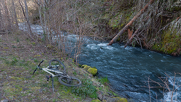 PacNW creek running fast with early spring rain