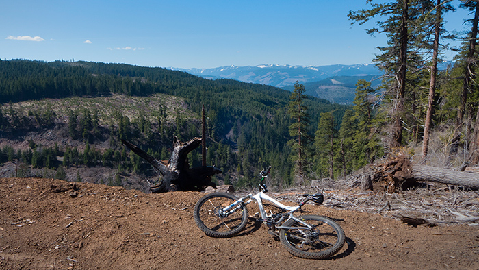 Mountain bike riding in the Cascade Mountains