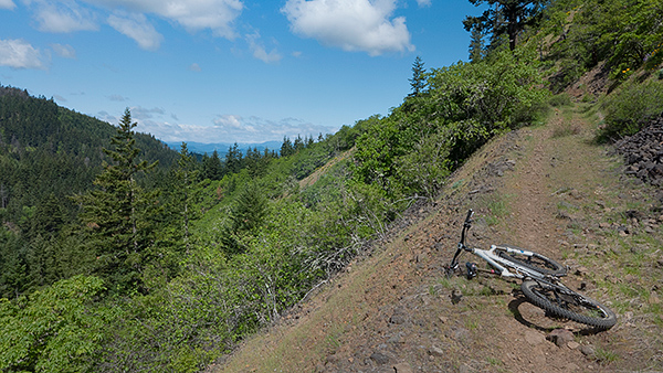 Remote trail in the Cascade foothills
