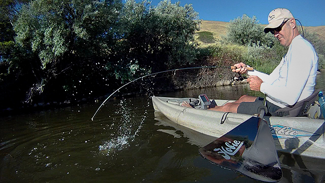 Click HERE for John Day River kayak fishing video