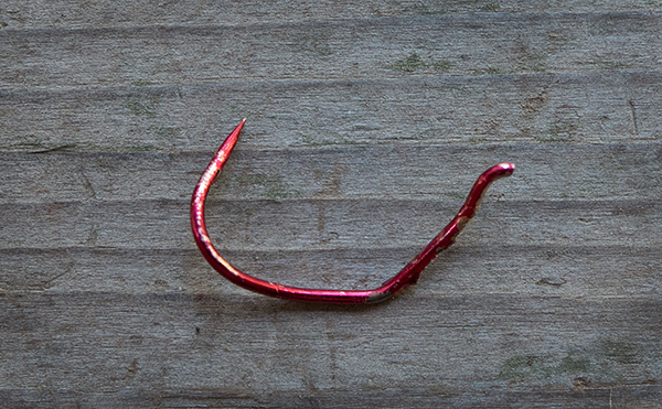 Treble hook destroyed by big salmon