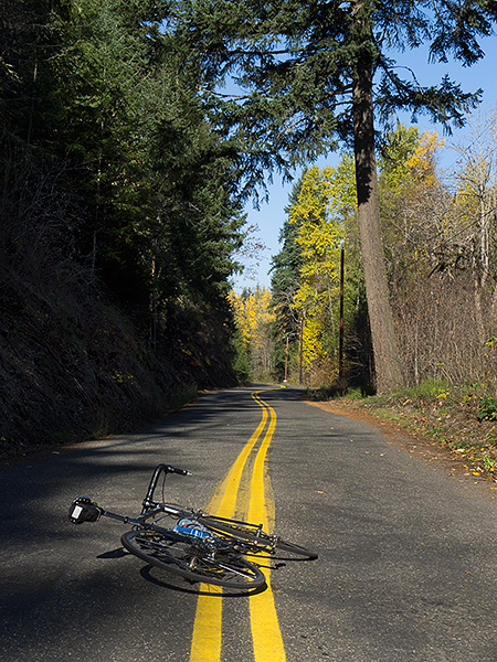 Bike riding in the Pacific Northwest on a sunny autumn day