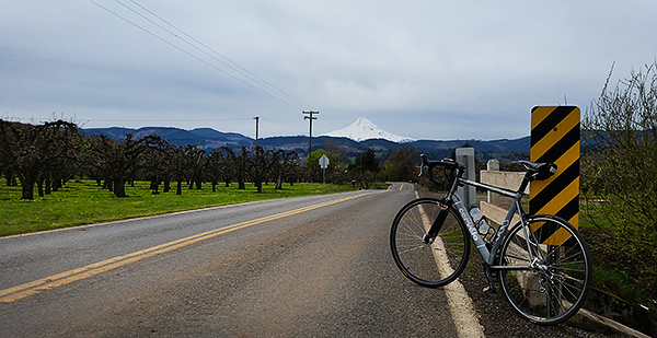 Heading for Mt Hood on a bike ride in the Pacific Northwest