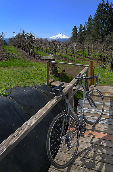Bike ride to Mt. Hood on a perfect PacNW spring day