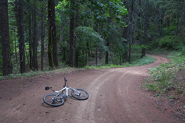 Cycling on Pacific Northwest Forest Service and logging roads