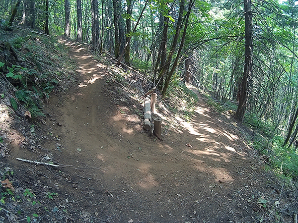 Off camber switchback on SW Washington mountain bike trail
