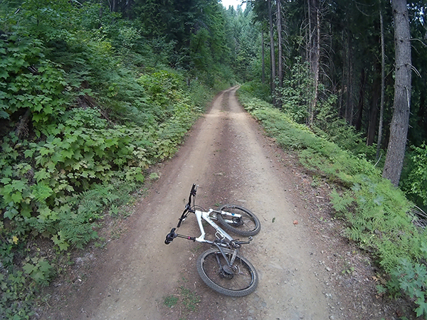 Mountain bike riding on Forest Service roads in SW Washington