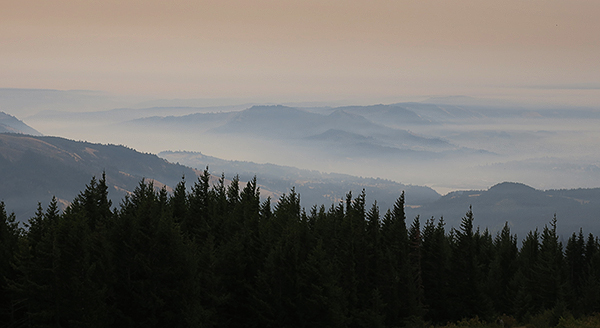 Smoke from the Eagle Creek fires chokes the Columbia River Gorge