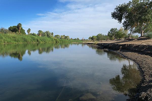 Colorado River in Yuma, AZ