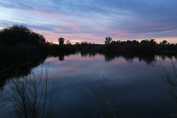 Fortuna Pond, just outside of Yuma, AZ