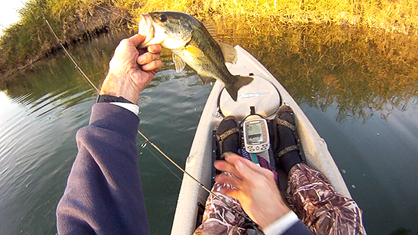 Mittry Lake largemouth bass caught kayak fishing