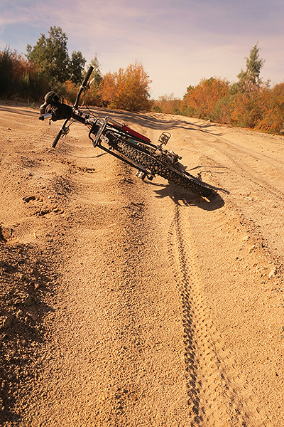 Rain makes all the difference for desert mountain biking.