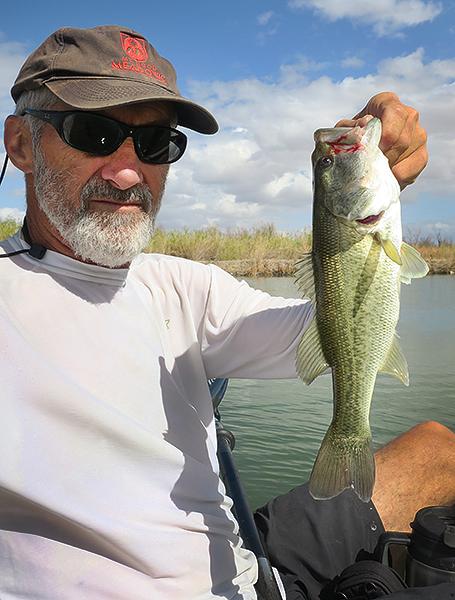 Mittry Lake largemouth bass caught by watermanatwork.com kayak fisherman Ron Barbish