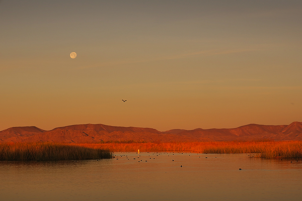 Moonrise at sunset on Mittry Lake in southwest Arizona.