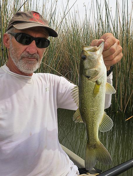 Mittry Lake largemouth bass caught by watermanatwork.com kayak fisherman Ron Barbish.