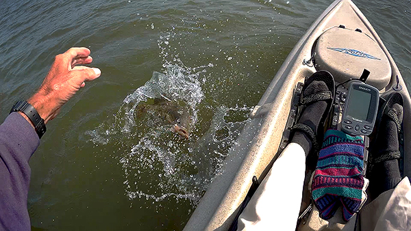 Click HERE to view the Kayak Fishing for Smallmouth Bass video on YouTube
