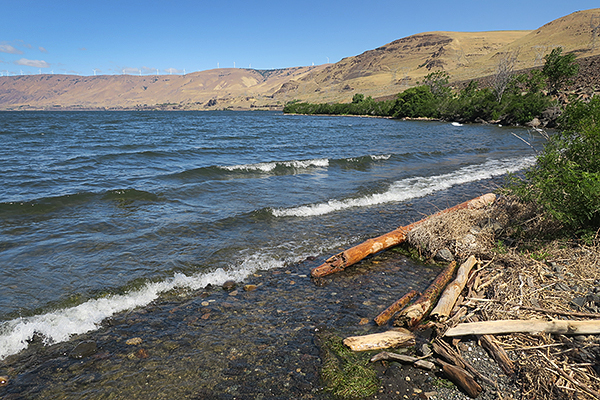 The Columbia River in eastern Washington