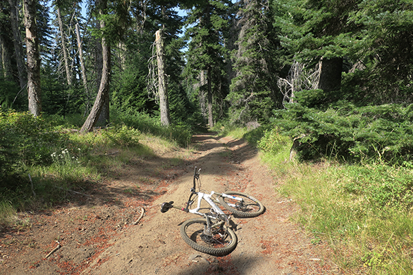 Mountain bike riding on park service roads in the Cascade Mountains