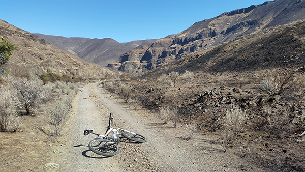 Mountain bike riding in Deschutes River canyon