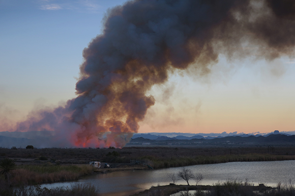 Desert wildfire burns at sunrise in the lower Colorado River basin