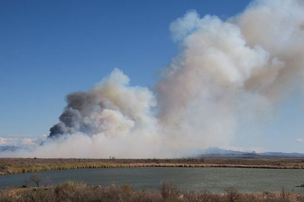 Wildfire burning across the Colorado River flood plain