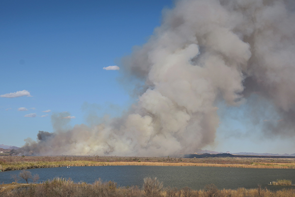 Fire burns between the Colorado River and Mittry Lake in southwest Arizona