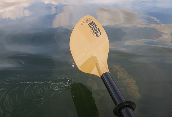 Werner Tybee Hooked kayak fishing paddle