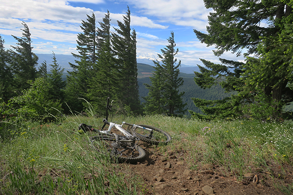 Mountain biking in the Cascade Mountains