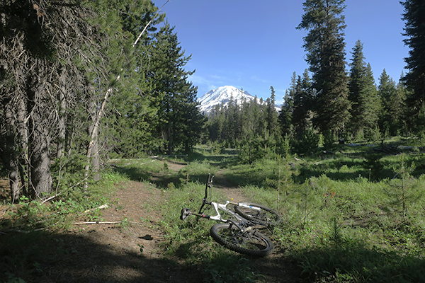 Mountain biking in the Cascade Mountains near Mt Adams in central Washington