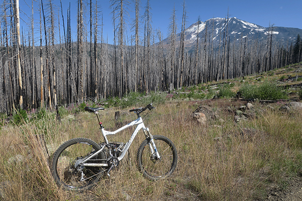 Mountain biking near Mt Adams in the Cascade Mountains