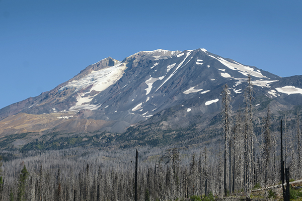 Mt. Adams in the Cascade Mountains of central Washington