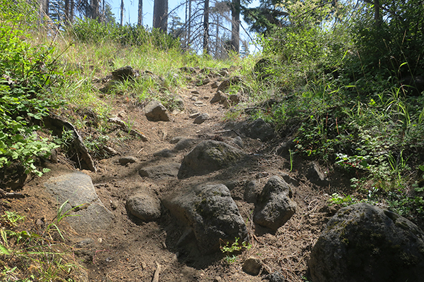 A rocky section of trail in the Cascade Mountains