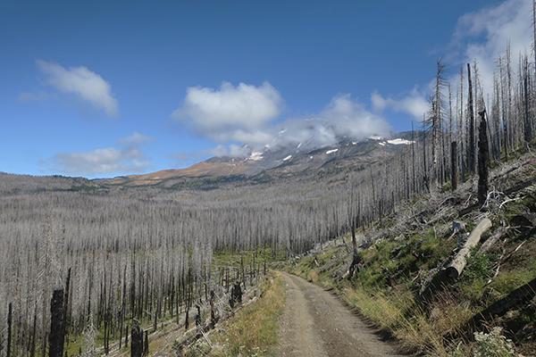Mountain biking near Mt Adams in the Cascade Mountains of central Washington
