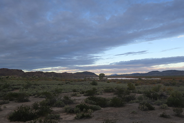 A cloudy desert morning on the lower Colorado River