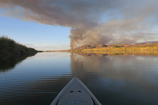 Wildfire on the banks of the lower Colorado River